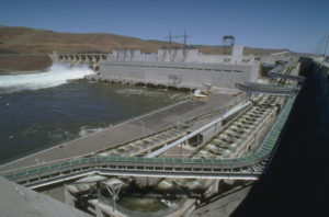 Little Goose Dam maintenance issues
