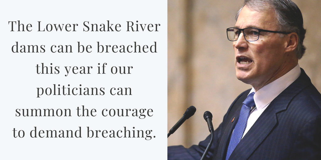 inslee courage