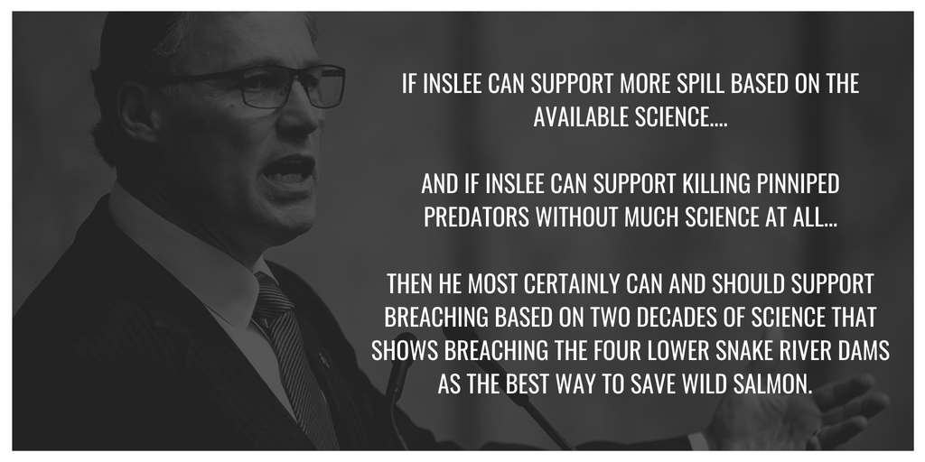 inslee to support breaching