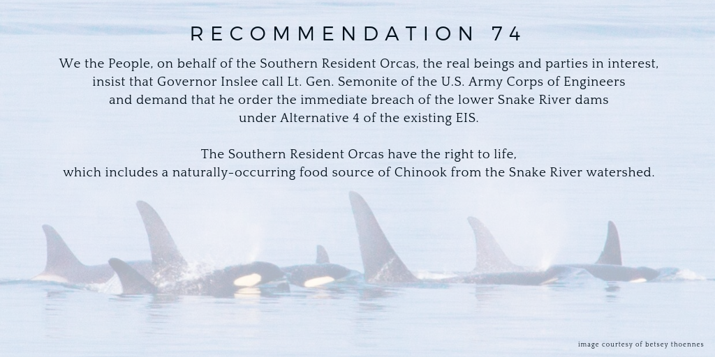 Recommendation 74. We the people on behalf of the southern resident orcas the real beings and parties in interest insist that Governor Inslee call lt. gen. semonite of the U.S. Army Corps of Engineers and demand that he order the immediate breach of the lower Snake River dams under Alternative 4 of the existing EIS. The southern resident orcas have the right to life which includes a naturally -occuring food source of Chinook from the Snake River watershed.